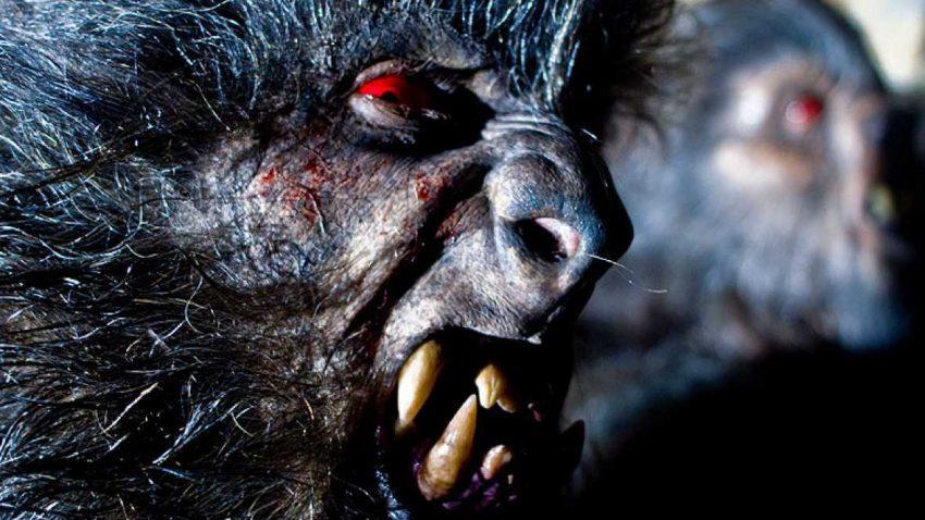 Hombre Lobo español - Romasanta
