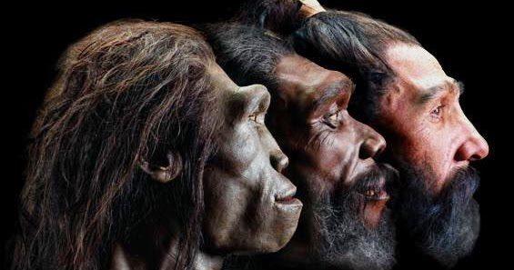 Charles Darwin y la evolución humana. Hominización