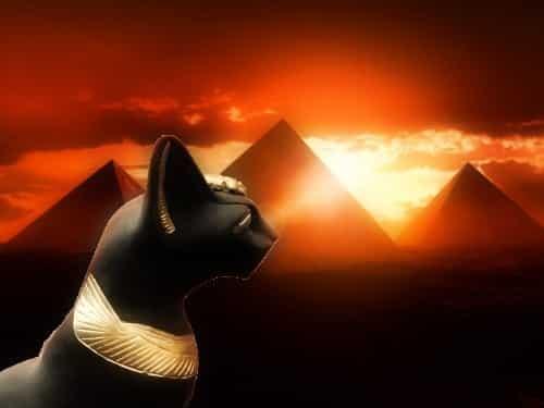 Animales sagrados en Egipto