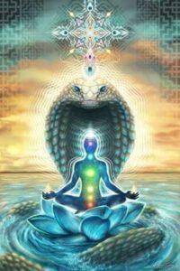 Los siete chakras y la energía Kundalini simbolizado en la serpiente.