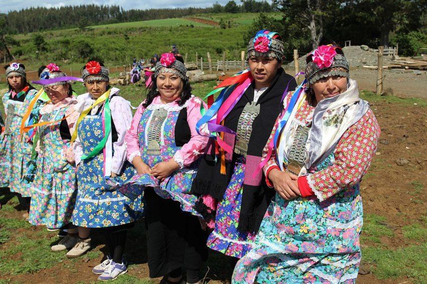 pueblo mapuche origen historia chile actualidad