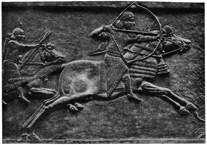 Asurbanipal de Asiria biografía ninive matando un león