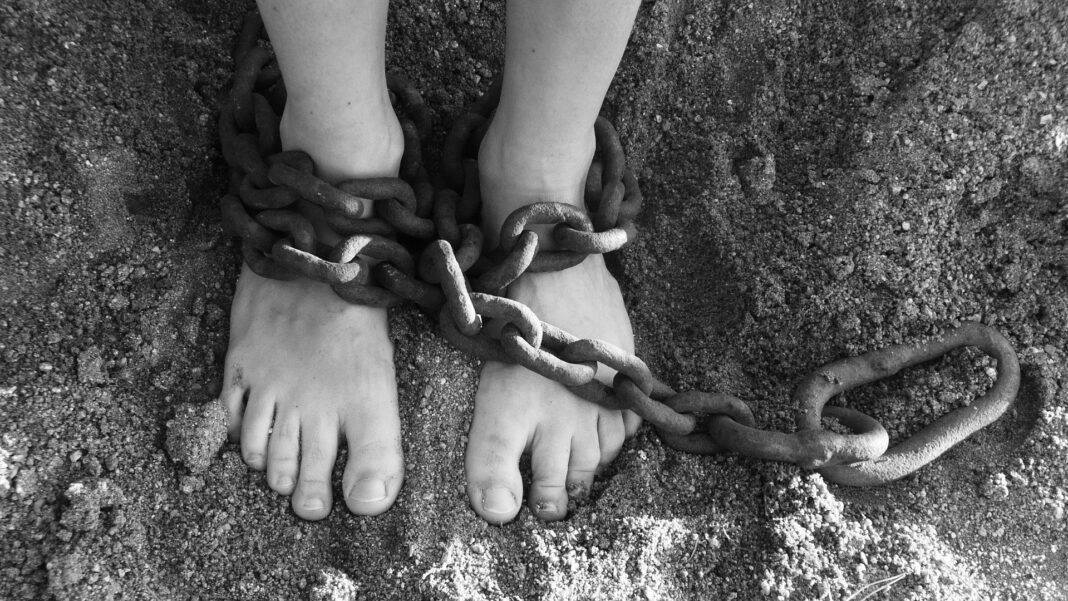 Los países italianos estaban obligados a ejercer la esclavitud porque no tenían otro producto, aparte de los esclavos humanos, que valiese la pena exportar